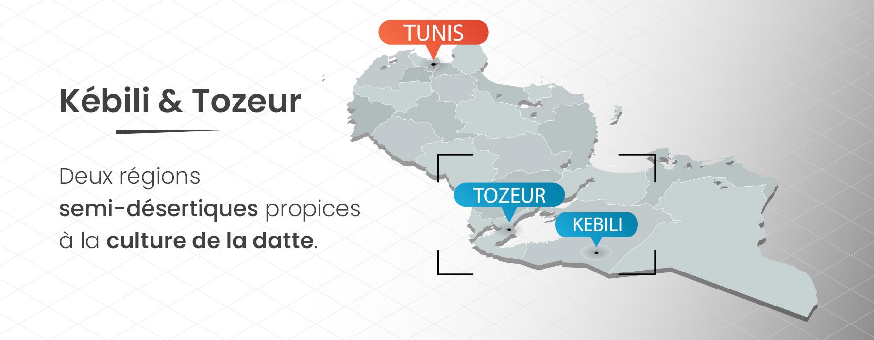 Dattes Yummy'z Tunisie